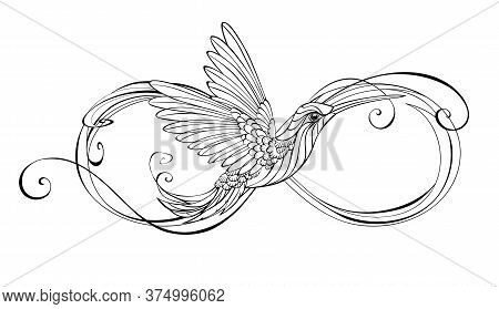 Contour Infinity Symbol With Stylized Hummingbird Bird On An Isolated White Background.