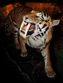 Saber-toothed tiger (Machairodontinae) on a dark background poster
