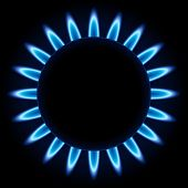 Blue flames ring of kitchen burner isolated on black background. poster