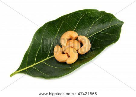 Cashews On Green Leaf
