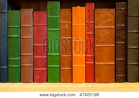 Shelf of Leather Bound Books