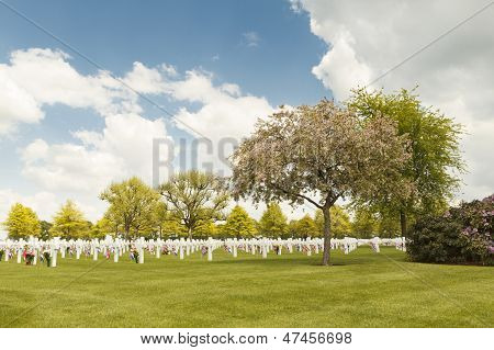American War Cemetery Margraten