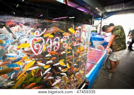 BANGKOK, THAILAND - APR 24:  Aquarium fish in fishmarket at Chatuchak Weekend Market Apr 24, 2012 in Bangkok, Thailand. Is one of the world's largest markets covering over 35 acres with 15,000 stalls.