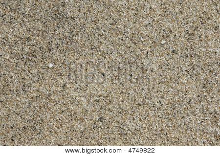 Beach Sand Close-up
