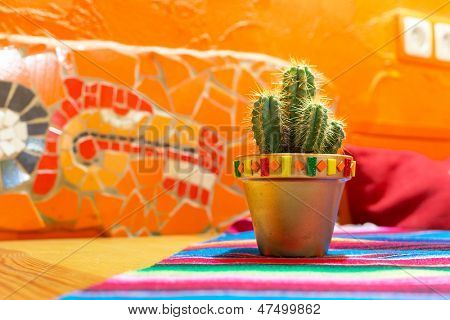 Mexican cactus in the pot poster