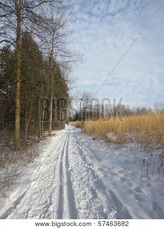 Popular Cross Country Ski Trail
