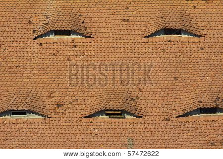 Eyebrow Windows In Hungary