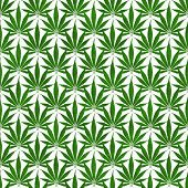 Green Marijuana Leaf Pattern Repeat Background that is seamless and repeats poster