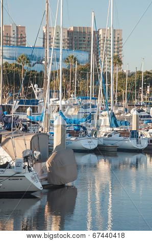 Marina Boats