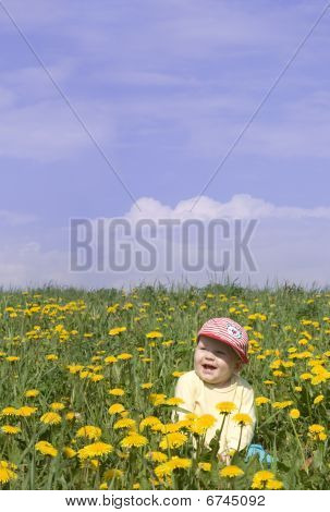 Laughing Little Boy On The Field