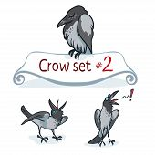 Hooded crow character design set number 2. Vector illustration, EPS 10. Contains transparent objects poster