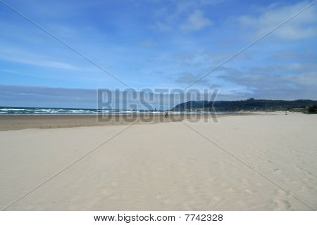 Beach In The Pacific Northwest