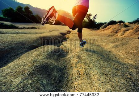 young woman runner legs running on mountain trail poster