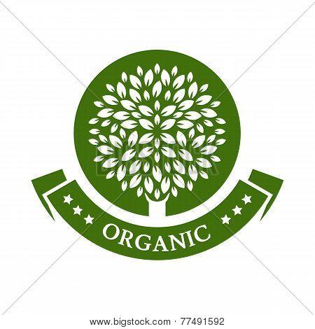 Green Circle Tree, Vector Logo Design Template. Organic Product Badge. Garden Or Ecology Icon