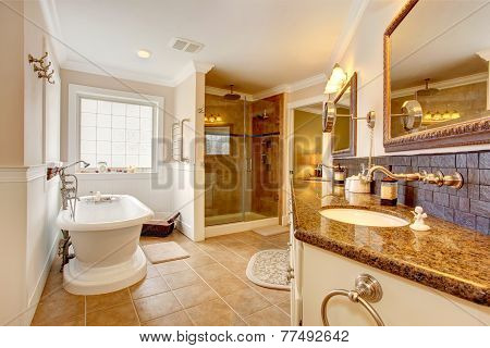 Luxury Bathroom Interior.
