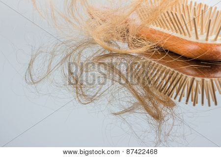 a hair brush with haeren. beginning of hair loss and alopecia