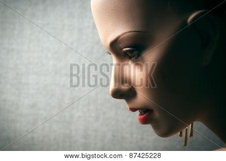 Profile Closeup Of Femal Mannequin Face