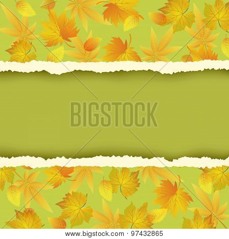 Green Background With Colorful Autumn Leaves