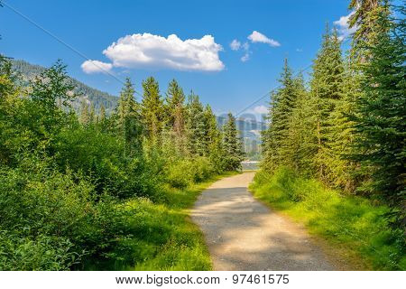 Beautiful Mountain Trail View at Lightning Lakes, British Columbia, Canada.