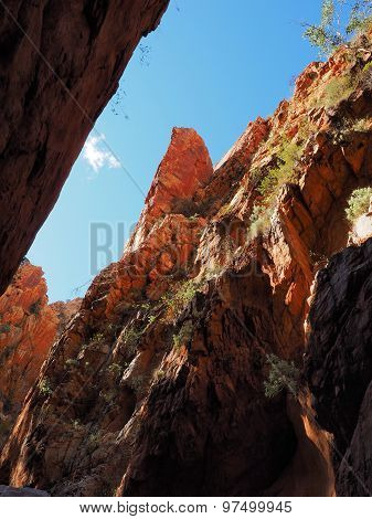 Late afternoon view up Standley Chasm