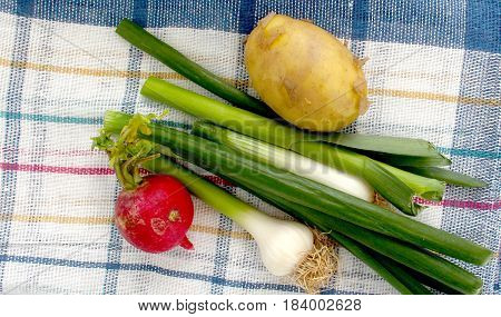 Spring Vegetables, Fresh, Potato,garlic,onion, And Radish ,