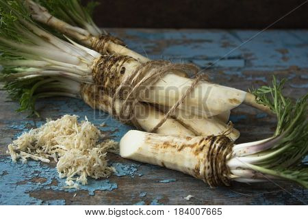 Root of horse radish  on a blue background with peeling paint