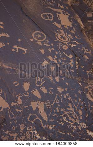 Numerous petroglyphs from Newspaper Rock in southeastern Utah.