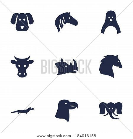 Set Of 9 Alive Icons Set.Collection Of Rhinoceros, Steed, Hound And Other Elements.