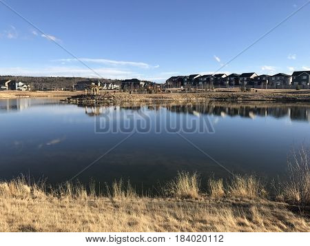 Beautiful pond with houses around in subdivision