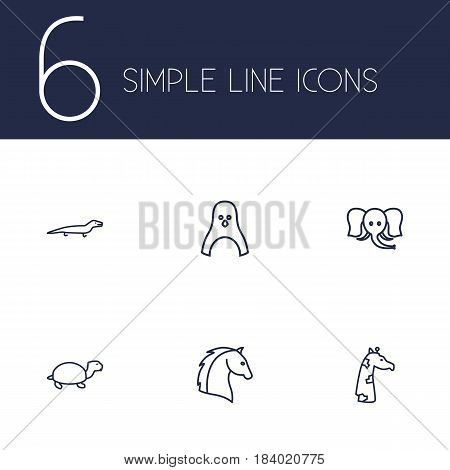 Set Of 6 Brute Outline Icons Set.Collection Of Horse, Elephant, Penguin And Other Elements.