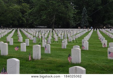 Memorial Day, honoring the solders with United States flags in front of tombstones, Zachary Taylor National Cemetery