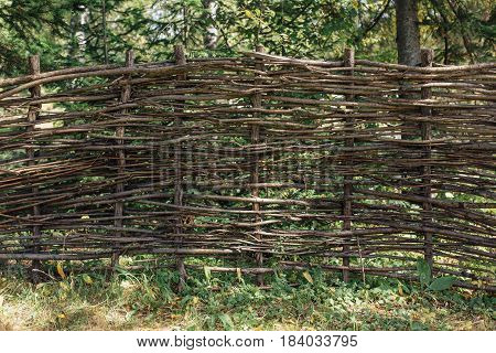Natural fence crafted of twigs in the garden.