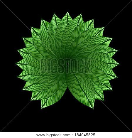 Green leaves circle on black background. Degrade color. Foliage