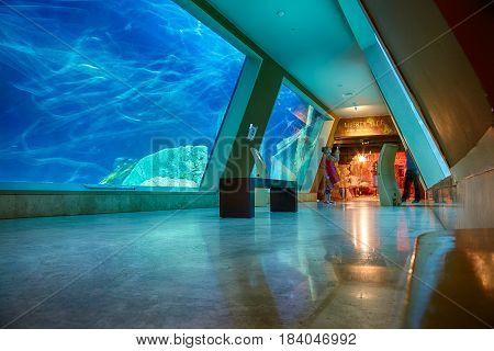 The Interior Of Istanbul Sea Life Aquarium Turkuazoo.