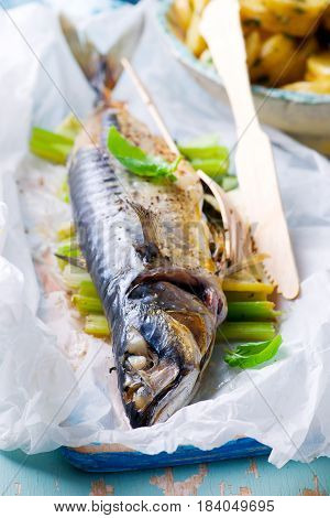 Mackerel in parchment. style rustic .selective focus