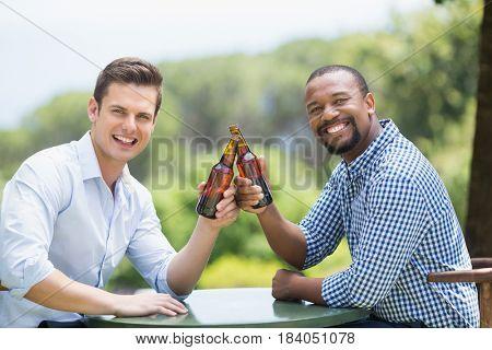 Portrait of friends toasting beer bottles in the restaurant