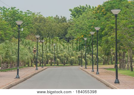 View of empty road flanked with street lamp and green natural background.