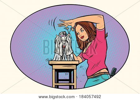 dog grooming, Barber shears pet. Comic book cartoon pop art retro style vector illustration