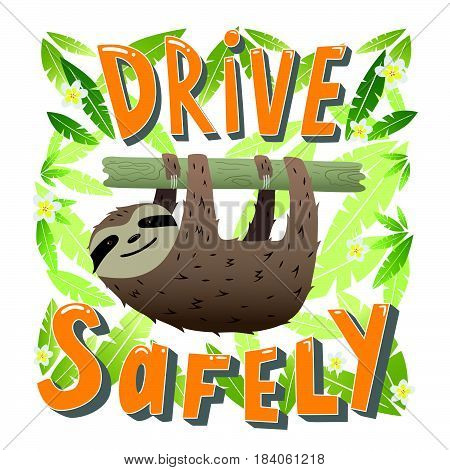 Drive safely - unique hand drawn lettering. Great design for poster. Sloth hanging on a branch in the leaves of trees.