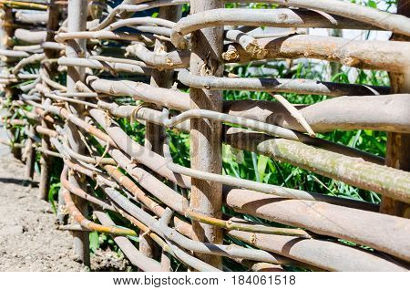 A woven wooden fence made of thin old branches in the countryside