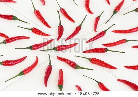 red hot chili peppers, popular spices concept - decorative pattern of red hot chili with green tails on white background, beautiful red collage of freely lying peppers, top view, flat lay