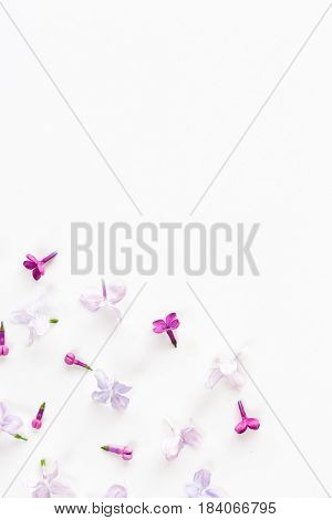 white background on a half filled with lilac flowers. Concept of freshness and beautifulness. Flat lay. Top view. empty spase for the text.