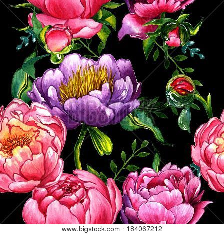 Wildflower peony flower pattern in a watercolor style isolated. Aquarelle wild flower for background, texture, wrapper pattern, frame or border.