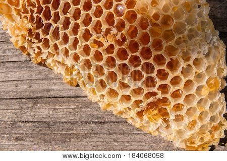 Section Of Wax Honeycomb From Beehive On The Vintage Wooden Background.