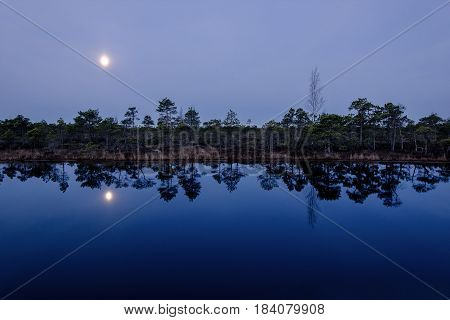 Marsh landscape with a lake in the moonlight.