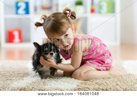 Little girl with Chihuahua dog in children room. Kids and pets friendship