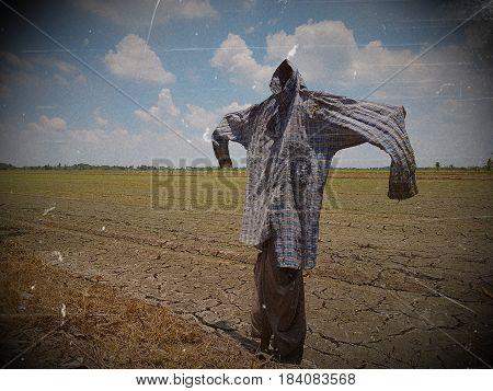 Silhouette of a scarecrow on a field,Thai Scarecrow in a field on a sunny day,Close up of Scarecrow in rural area of Thailand