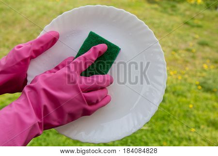 Hands In Pink Protective Gloves Washing A Plate