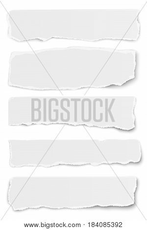 Collection of vector oblong torn paper tears isolated on white background