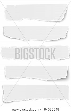 Set of elongated tattered paper scraps isolated on white background